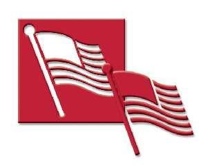 Us Flag - Medium