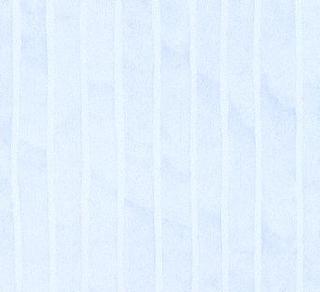 Paperwhite - Beach Stripe