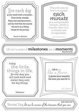 Write Stickers (Vellum) - Life Is Grand