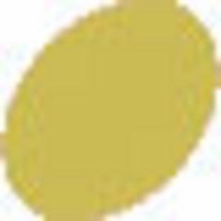 Distress Crackle Paint - Shabby Shutters